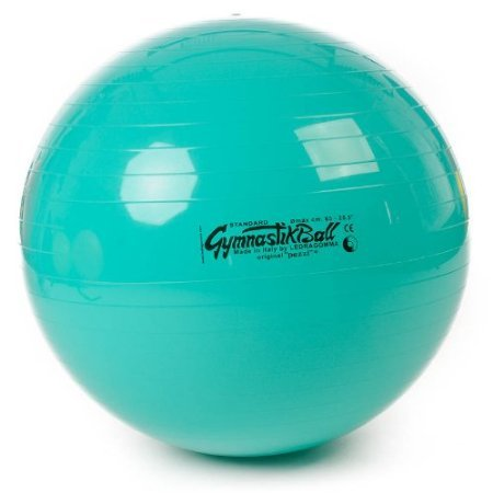 pezziball gymnastikball pezzi 65 cm gymnastikball shop pezziball sitzball bungen. Black Bedroom Furniture Sets. Home Design Ideas