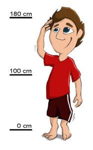Sitzball / Gymnastikball - Körpergröße